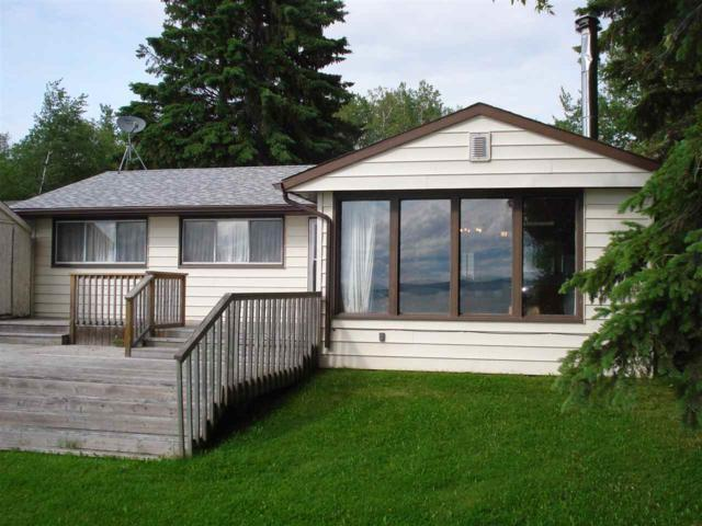 A34 Johnsonia Beach Pigeon Lake, Rural Leduc County, AB T0C 2C0 (#E4163204) :: David St. Jean Real Estate Group