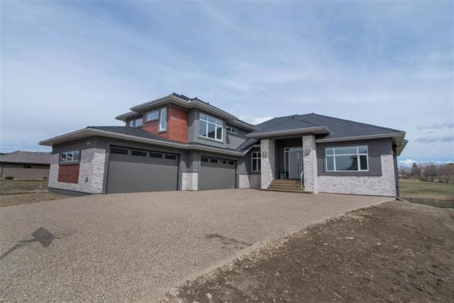 436 52327 RGE RD 233, Rural Strathcona County, AB T8B 1C6 (#E4163239) :: David St. Jean Real Estate Group