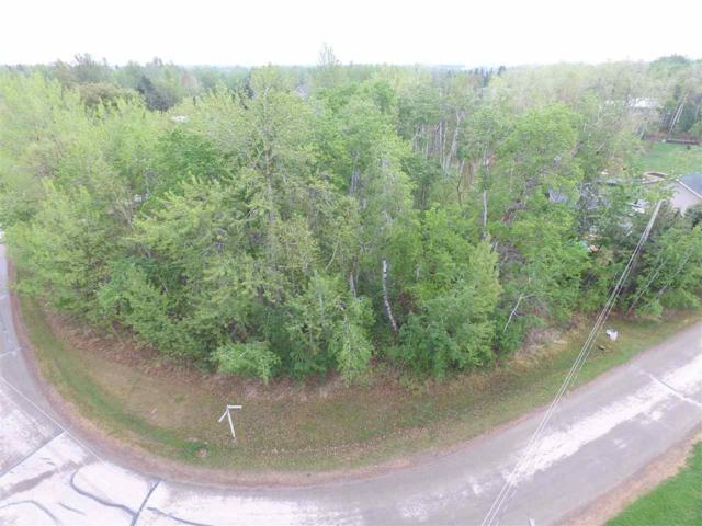 816 Lakeside Drive, Rural Parkland County, AB T7Z 2V8 (#E4163927) :: Initia Real Estate