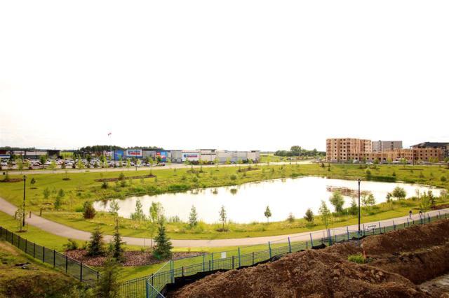 315 11803 22 Avenue, Edmonton, AB T6W 2R9 (#E4164504) :: The Foundry Real Estate Company