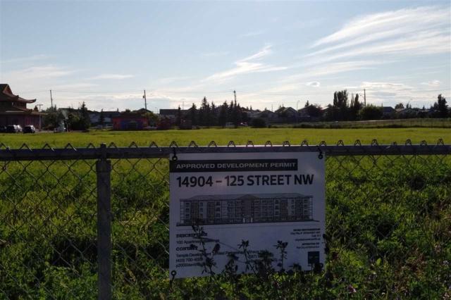 14904 125 ST NW, Edmonton, AB T5X 0G2 (#E4165655) :: Mozaic Realty Group