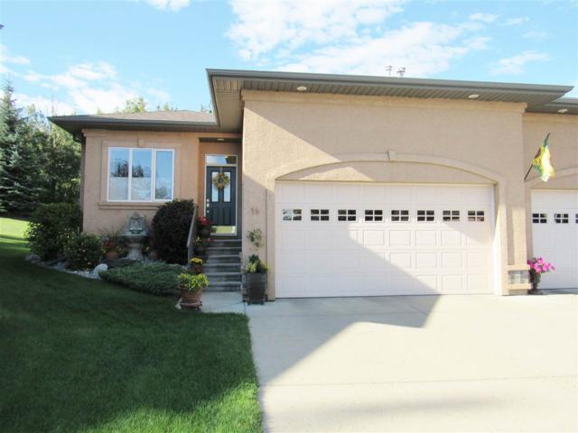 #14 50 Oakridge Drive, St. Albert, AB T8N 7A1 (#E4165995) :: David St. Jean Real Estate Group