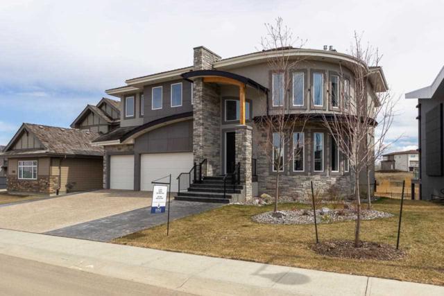 4831 Woolsey Lane, Edmonton, AB T6W 0S3 (#E4166209) :: Mozaic Realty Group