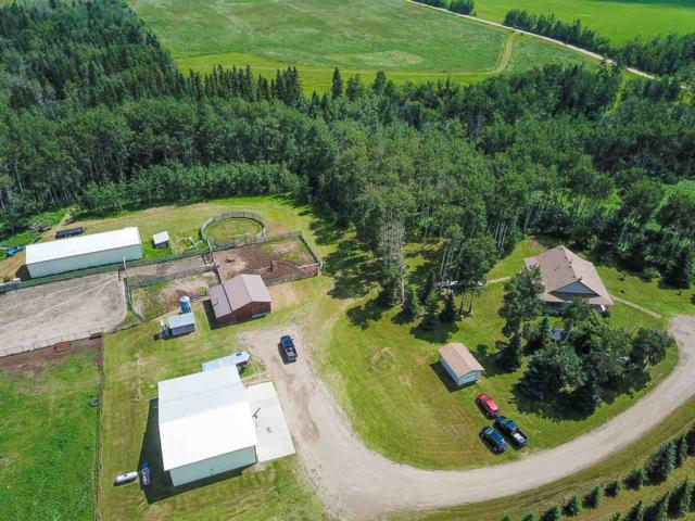2536 Twp 493, Rural Leduc County, AB T0C 2T0 (#E4166332) :: The Foundry Real Estate Company