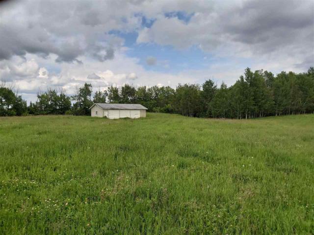 50307 Rge Rd 224, Rural Leduc County, AB T0B 3M0 (#E4166374) :: The Foundry Real Estate Company