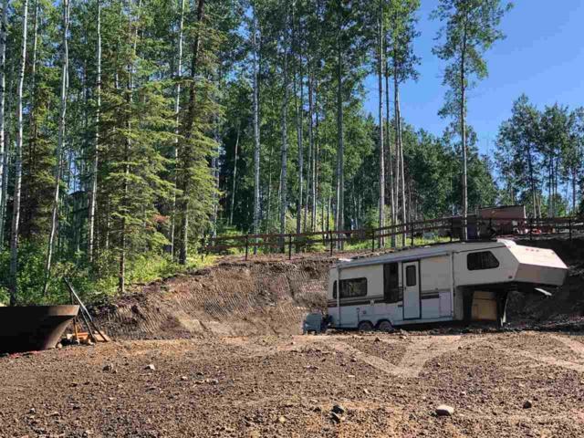 24 Lawrence Lake, Rural Lesser Slave River M.D., AB T9S 1C4 (#E4166637) :: David St. Jean Real Estate Group