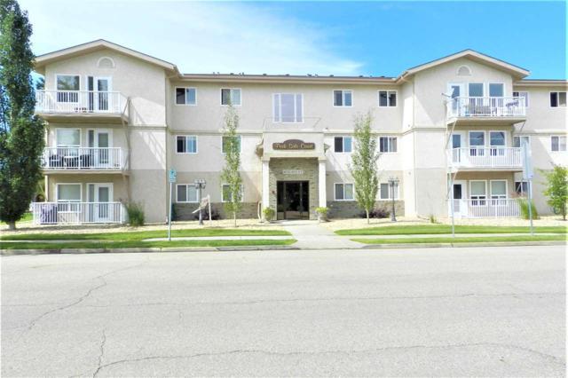 305 4604 48A Street, Leduc, AB T9E 5X8 (#E4167194) :: David St. Jean Real Estate Group