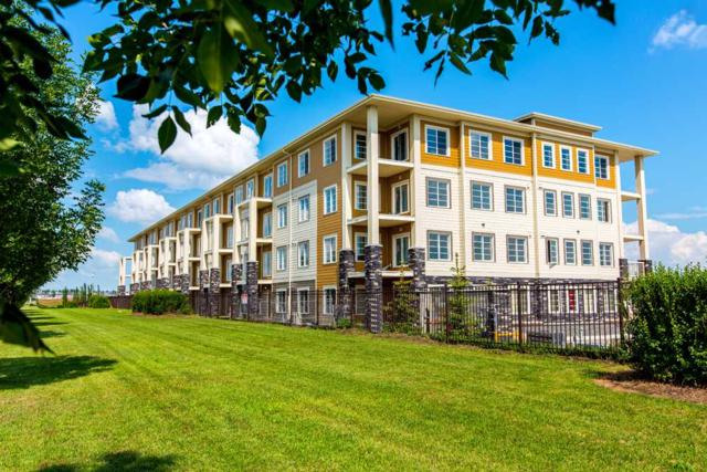 413 3670 139 Avenue, Edmonton, AB T5Y 3N5 (#E4167529) :: The Foundry Real Estate Company