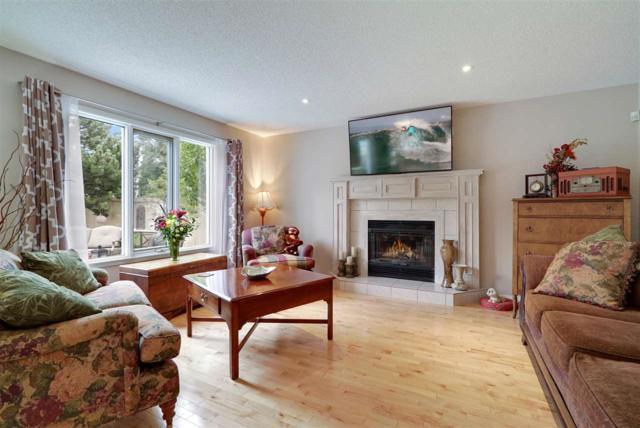 172 Ormsby Road E, Edmonton, AB T5T 5T3 (#E4167909) :: David St. Jean Real Estate Group