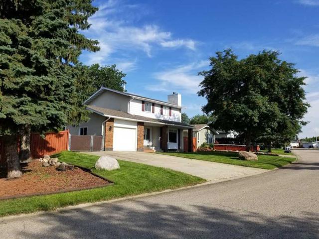 449 Lee_Ridge Road, Edmonton, AB T6K 0N9 (#E4168008) :: The Foundry Real Estate Company