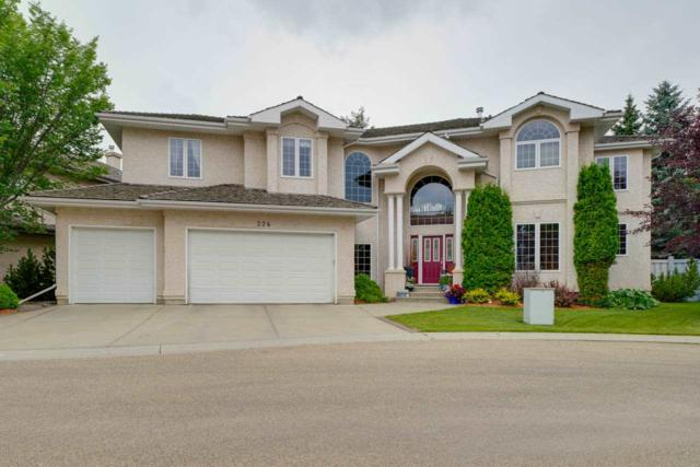 224 Wolf Willow Road, Edmonton, AB T5T 6N3 (#E4168031) :: The Foundry Real Estate Company