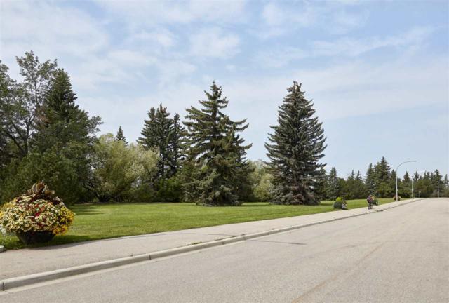 8715 Saskatchewan Drive, Edmonton, AB T5P 3R5 (#E4168126) :: David St. Jean Real Estate Group