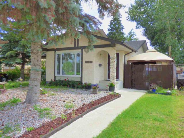 14607 21 Street, Edmonton, AB T5Y 1V8 (#E4168303) :: David St. Jean Real Estate Group