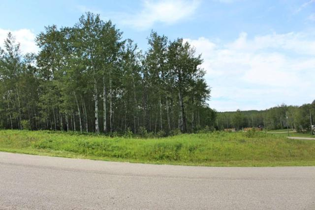 39 62331 RGE RD 411A, Rural Bonnyville M.D., AB T9M 1P1 (#E4168624) :: Initia Real Estate