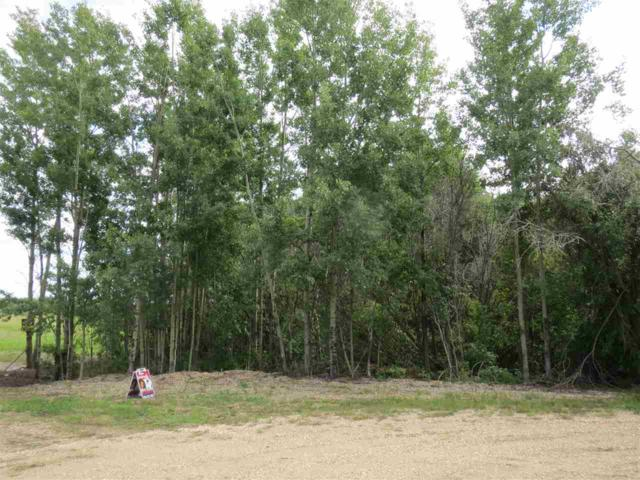 51423 Rg Rd 202, Rural Beaver County, AB T0B 4J1 (#E4169209) :: The Foundry Real Estate Company