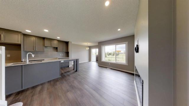 9420 209 Street NW, Edmonton, AB T5T 7J9 (#E4169229) :: The Foundry Real Estate Company