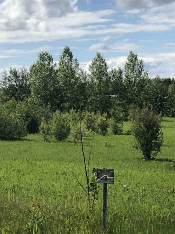 14 15025 TWP RD 470, Rural Wetaskiwin County, AB T0C 2V0 (#E4169422) :: Initia Real Estate