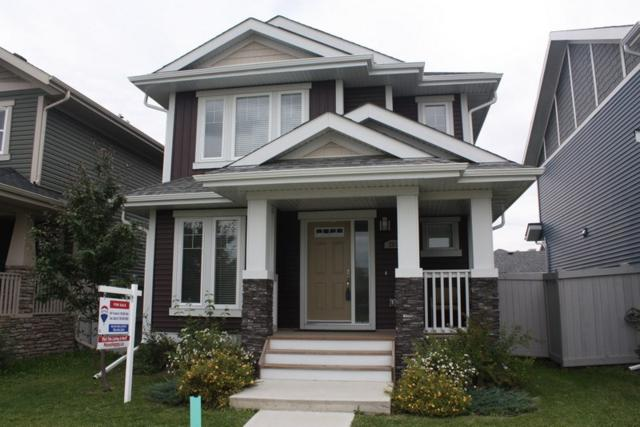 261 Griesbach Road NW, Edmonton, AB T5E 6S5 (#E4169453) :: David St. Jean Real Estate Group