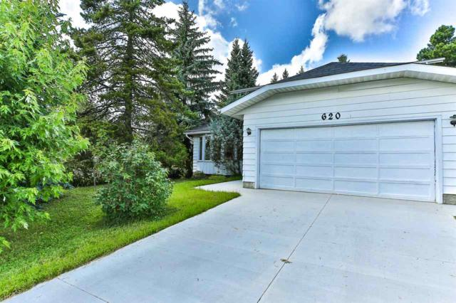 620 Wolf Willow Road, Edmonton, AB T5T 1K7 (#E4169486) :: The Foundry Real Estate Company