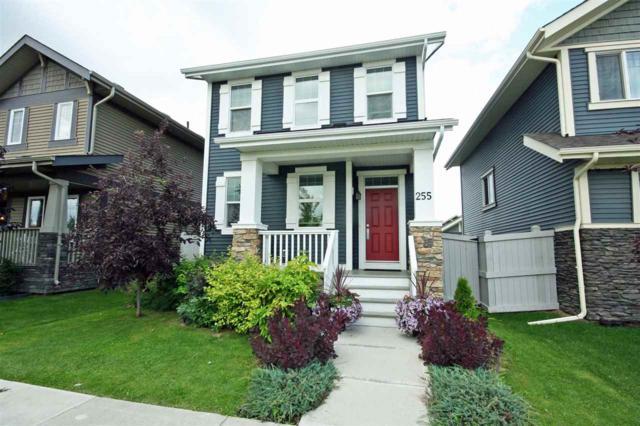 255 Griesbach Road, Edmonton, AB T5E 6S5 (#E4169519) :: David St. Jean Real Estate Group