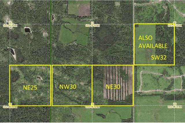 Range Road 185, Rural Big Lakes M.D., AB T0H 3H0 (#E4173661) :: David St. Jean Real Estate Group