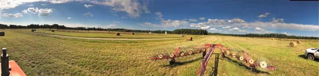 54327 Rrd 130, Rural Yellowhead, AB T0E 1S0 (#E4174488) :: The Foundry Real Estate Company