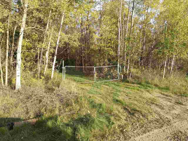 W4 Rge 19 Twp 62. Sec. 30, Rural Thorhild County, AB T0A 3J0 (#E4174591) :: The Foundry Real Estate Company