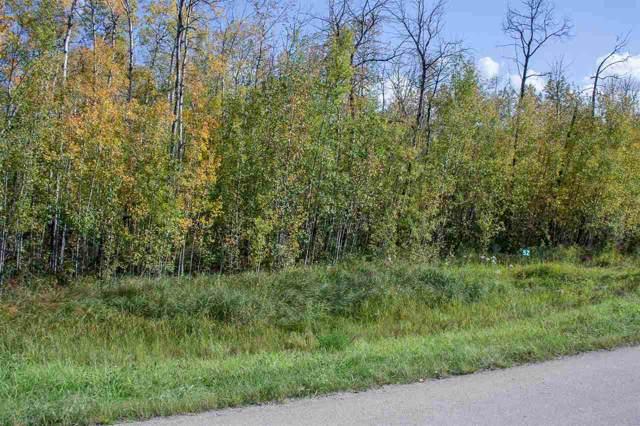 52 53522 RGE RD 272, Rural Parkland County, AB T7X 3N2 (#E4174623) :: Initia Real Estate