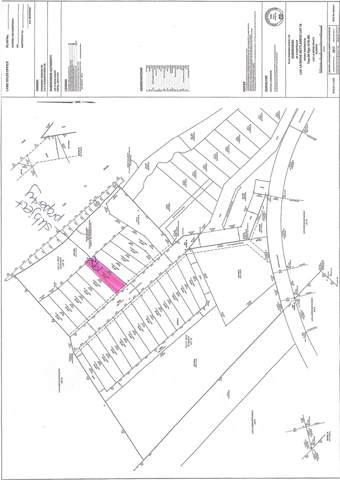 19 Eagle Haunt Estates, Rural Lac La Biche County, AB T0A 2T0 (#E4175375) :: Initia Real Estate