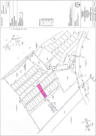 55 Eagle Haunt Estates, Rural Lac La Biche County, AB T0A 2T0 (#E4175379) :: Initia Real Estate