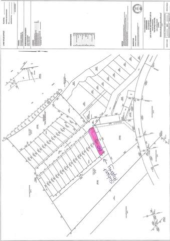 60 Eagle Haunt Estates, Rural Lac La Biche County, AB T0A 2T0 (#E4175384) :: Initia Real Estate