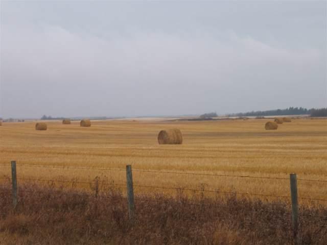 53431 Rng Rd 154, Rural Minburn County, AB T9C 1T6 (#E4177793) :: David St. Jean Real Estate Group