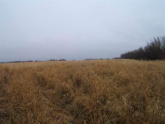 SW-12-53-13 -4Th, Rural Minburn County, AB T9C 1R3 (#E4177795) :: David St. Jean Real Estate Group