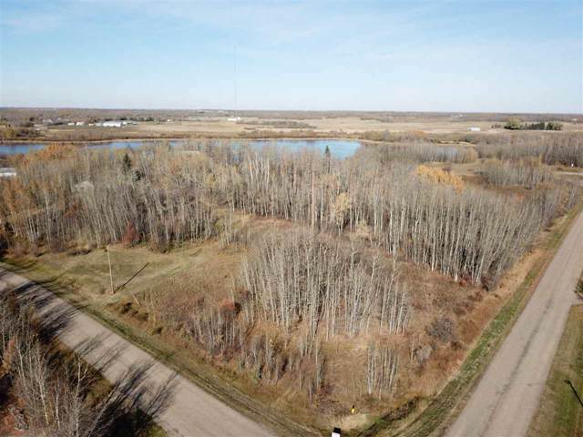 73 22458 TWP RD 510, Rural Strathcona County, AB T8C 1H1 (#E4178030) :: Initia Real Estate