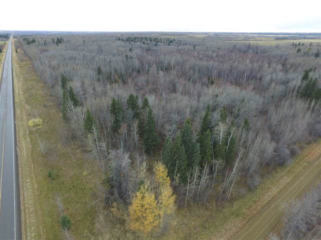 Twp Rd 470 Rge Rd 24, Rural Wetaskiwin County, AB T0C 2V0 (#E4178439) :: The Foundry Real Estate Company