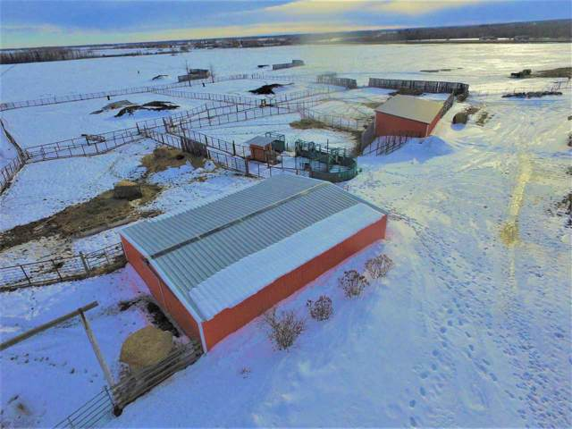 253045 Twp Rd 472, Rural Wetaskiwin County, AB T9A 1X2 (#E4179263) :: The Foundry Real Estate Company
