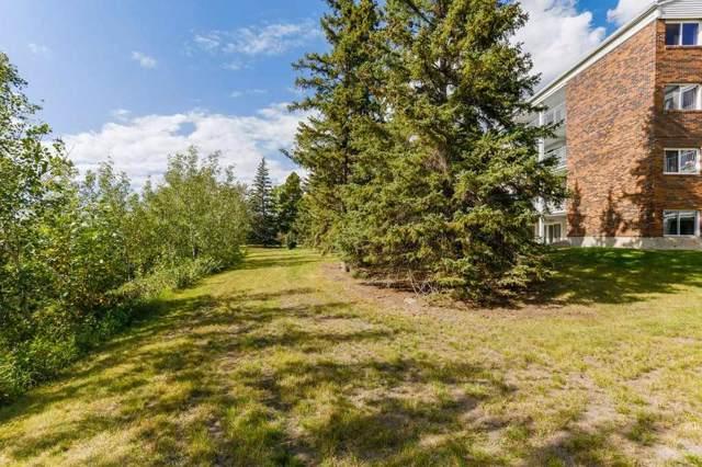 408 4404 122 Street, Edmonton, AB T6J 4A9 (#E4180272) :: Initia Real Estate