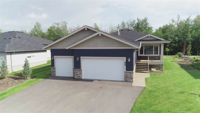 609 55101 Ste Anne Trail, Rural Lac Ste. Anne County, AB T0E 1A0 (#E4181303) :: Initia Real Estate