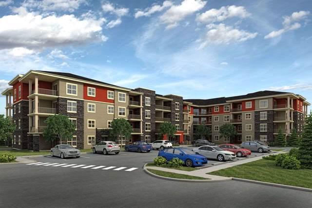 204 18122 77 Street, Edmonton, AB T5Z 0N7 (#E4181815) :: Initia Real Estate