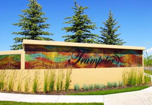 20476 128 Avenue, Edmonton, AB T5S 0L4 (#E4182222) :: The Foundry Real Estate Company