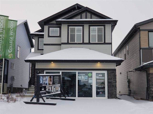 9712 223 Street, Edmonton, AB T5T 7B7 (#E4182263) :: Initia Real Estate