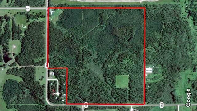 55001 Twp 465, Rural Wetaskiwin County, AB T0C 0T0 (#E4182412) :: Müve Team | RE/MAX Elite
