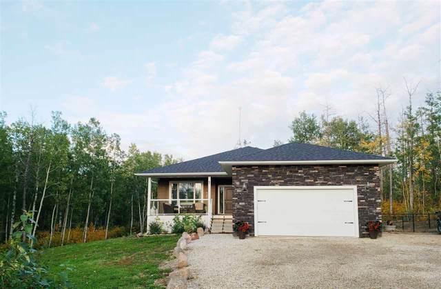 119 54406 Range Road 15, Rural Lac Ste. Anne County, AB T0E 1V0 (#E4183114) :: Initia Real Estate