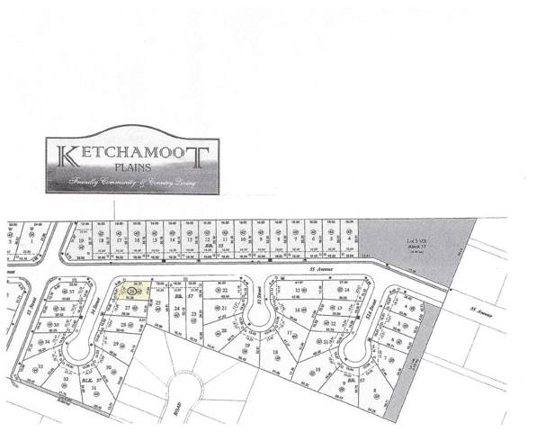 5303 54 Street, Tofield, AB T0B 4J0 (#E4183760) :: Initia Real Estate