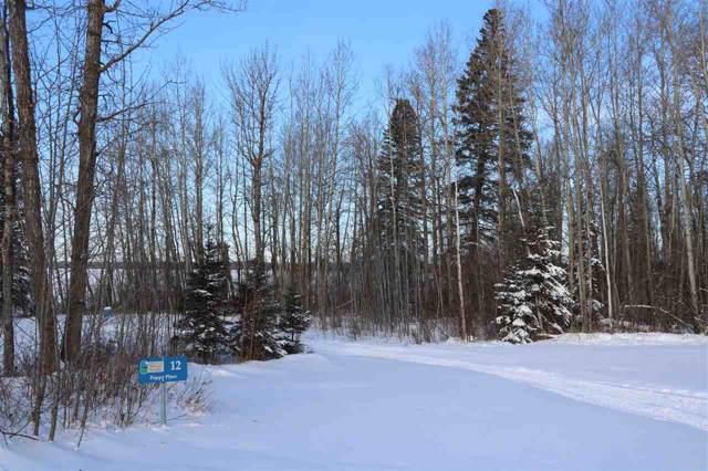 12 Poppy Place, Rural Lac Ste. Anne County, AB T0E 0L0 (#E4183967) :: The Foundry Real Estate Company