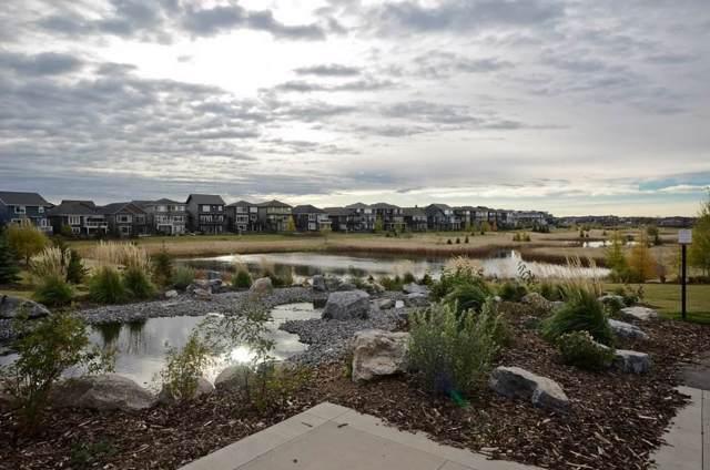 8812 219 Street, Edmonton, AB T5T 7E3 (#E4184331) :: The Foundry Real Estate Company