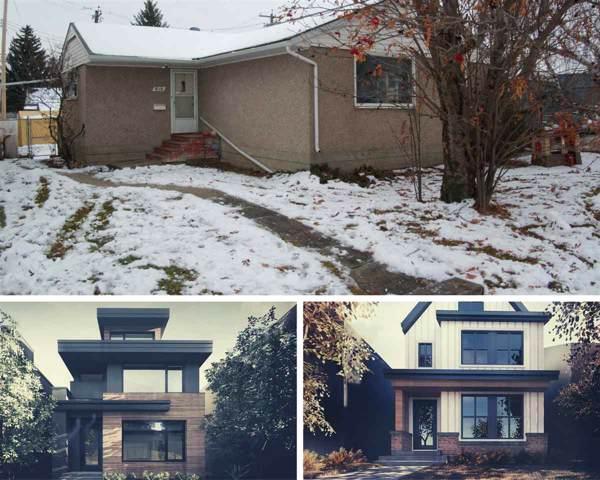 9115 143 Street, Edmonton, AB T5R 0P5 (#E4184359) :: Initia Real Estate