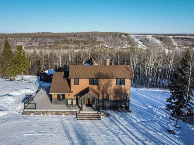 273008 B Twp Rd 480, Rural Wetaskiwin County, AB T0C 2P0 (#E4185860) :: Initia Real Estate
