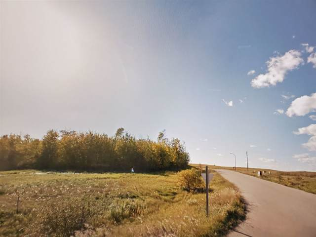 1417 Horseshoe Bay Estates, Cold Lake, AB T9M 1G8 (#E4186125) :: Initia Real Estate
