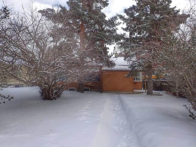 8715 118 Street, Edmonton, AB T6G 1T4 (#E4187270) :: Initia Real Estate